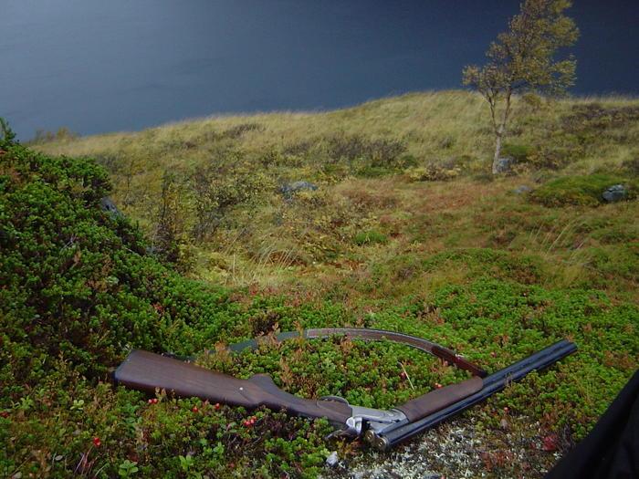 Rypejakt over Nordfjorden av Stian Olufsen